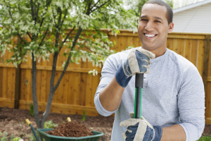 Four Ways to Add Home Value with Living Landscapes